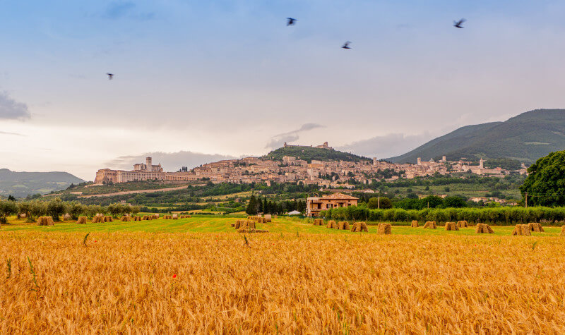 Schoolreis Toscane