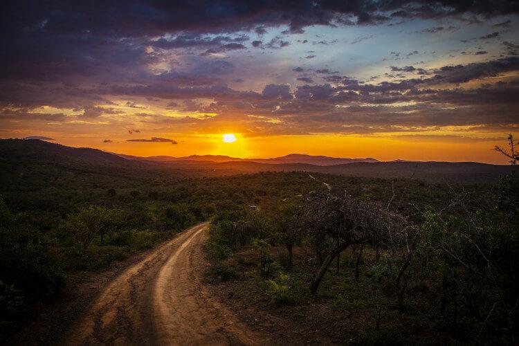 Natuur in Zuid-Afrika